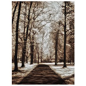 Wooded Journey II Canvas Wall Art
