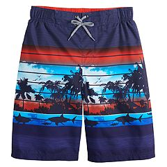 6f72298f77 Boys 8-20 zeroXposur Rip Current Swim Trunks