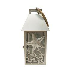 SONOMA Goods for Life™ Starfish Lantern Table Decor