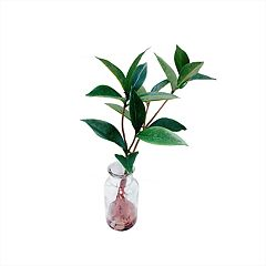 SONOMA Goods for Life™ Small Leaves Artificial Plant