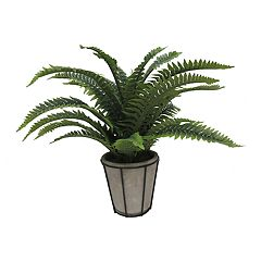 SONOMA Goods for Life™ Fern Artificial Plant