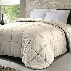Down Home All Season Microsoft Down-Alternative Comforter