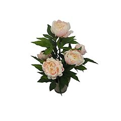 SONOMA Goods for Life™ Artificial Peony Potted Flower Table Decor