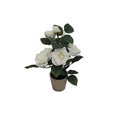 SONOMA Goods for Life™ Artificial White Rose Potted Flower Table Decor