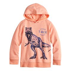 Boys 4-12 SONOMA Goods for Life™ T-Rex Pullover Hoodie