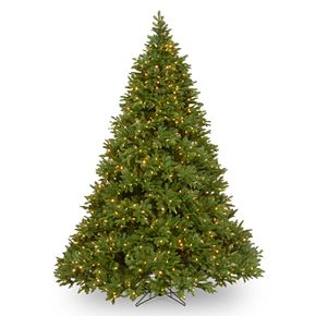 National Tree Co. 7.5 ft. Empire Grande Fir Deluxe Artificial Christmas Tree with LED Lights