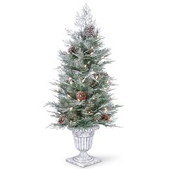 National Tree Co. 4 ft. Frosted Mountain Spruce Entrance Artificial Christmas Tree with Clear Lights