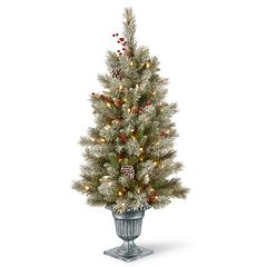 National Tree Co. 4 ft. Snowy Bristle Berry Entrance Artificial Christmas Tree with Clear Lights