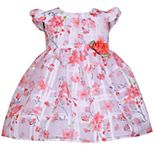 Toddler Girl Bonnie Jean Floral Rosette Dress
