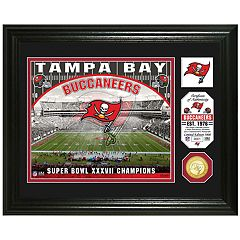 Highland Mint Tampa Bay Buccaneers Stadium Framed Photo