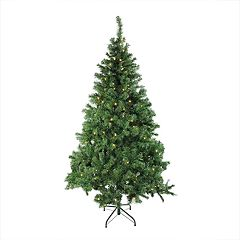 Northlight Seasonal 6-ft. LED Classic Pine Artificial Christmas Tree