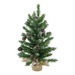 Northlight Seasonal 24-in. Frosted Norway Pine Artificial Christmas Tree