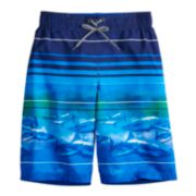 Boys 8-20 ZeroXposur Shark Swim Trunks