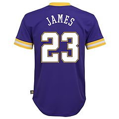 Boys 8-20 Los Angeles Lakers Lebron James Jersey Top