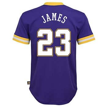 competitive price 4fad1 82c52 Boys 8-20 Los Angeles Lakers Lebron James Jersey Top