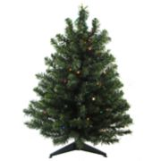 Northlight Seasonal 3-ft. Pre-Lit Two-Tone Canadian Pine Artificial Christmas Tree