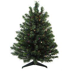Northlight Seasonal 2-ft. Pre-Lit LED Two-Tone Canadian Pine Artificial Christmas Tree