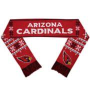 Adult Arizona Cardinals Light-Up Scarf