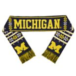 Adult Michigan Wolverines Light-Up Scarf