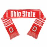 Adult Ohio State Buckeyes Light-Up Scarf