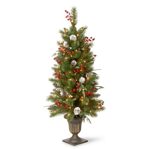 National Tree Company 48-in. Pre-Lit Entryway Frosted Pine Artificial Christmas Tree