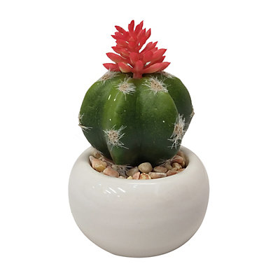 SONOMA Goods for Life? Two-Tone Artificial Cactus Plant