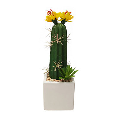 SONOMA Goods for Life? Floral Artificial Cactus Plant