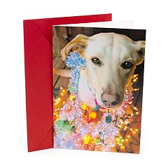 Hallmark Shoebox Yule Dog Funny Christmas Card