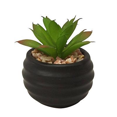 SONOMA Goods for Life? Artificial Succulent Plant