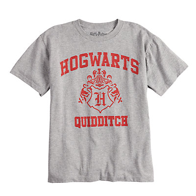 Boys 4-7 Harry Potter Hogwarts Quidditch Graphic Tee