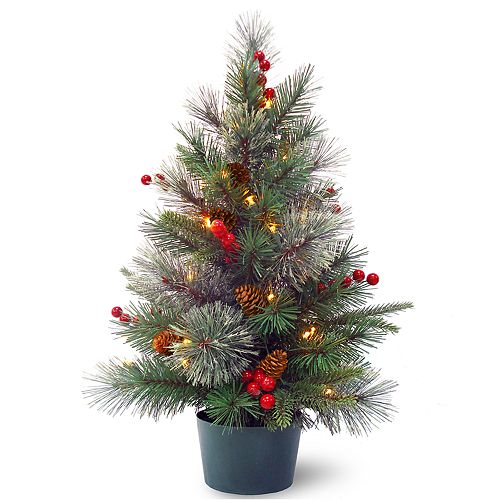 National Tree Company 2-ft. LED Colonial Artificial Christmas Tree