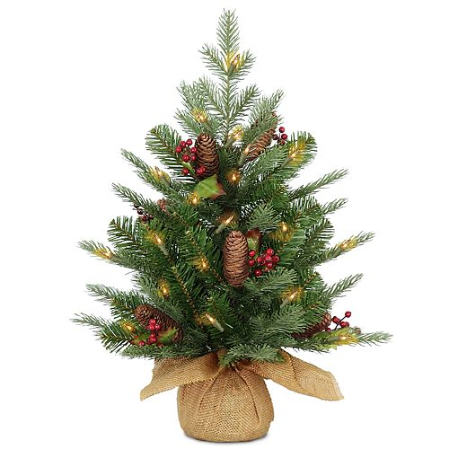 National Tree Company 2-ft. LED Nordic Spruce Artificial Christmas Tree