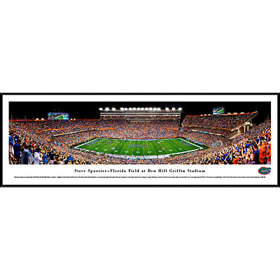 Florida Gators Framed Stadium Print