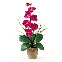 nearly natural Single-Stem Silk Phalaenopsis Orchid Floral Arrangement