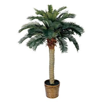 nearly natural Single Silk Sago Palm Tree