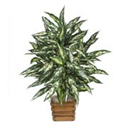 nearly natural Silk Chinese Evergreen Plant