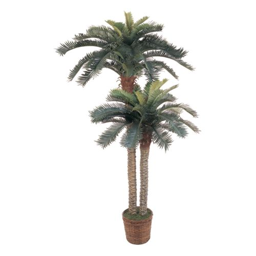 nearly natural Double Silk Sago Palm Trees