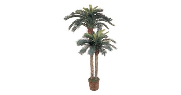 nearly natural double silk sago palm trees. Black Bedroom Furniture Sets. Home Design Ideas