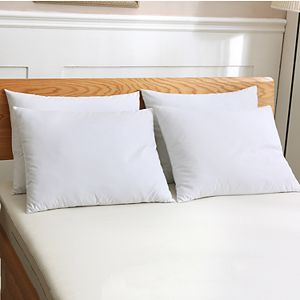 Dream On 2-pack Duck Down Blend Pillow
