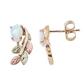 Black Hills Gold Tri-Tone Leaf Earrings