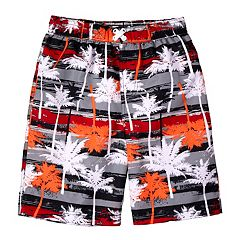 Boys 4-7 I-Extreme Palm Tree Swim Trunks