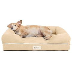 Friends Forever Hastings Pet Couch with Solid Memory Foam