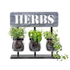 San Miguel 'Herbs' Planter Table Decor