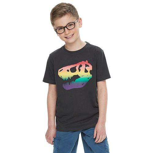 Boys 8-20 Family Fun™ Dinosaur Rainbow Pride Graphic Tee