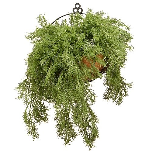 "National Christmas Tree Company 20"" Artificial Pine Basket Wall Decor"