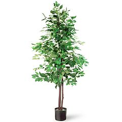 National Christmas Tree Company 5' Artificial Ficus Tree