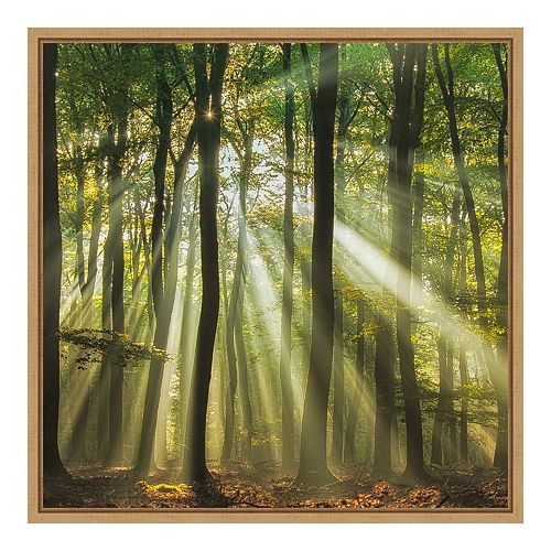 Amanti Art Sunny Start To The Day Framed Wall Art