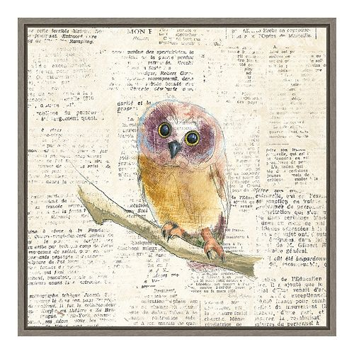Amanti Art Into the Woods II no Border (Owl) Canvas Wall Art