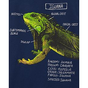 Boys 4-14 Carter's Iguana Information Tee