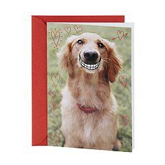Hallmark Shoebox Funny Valentine's Day Card (Smiling Dog)